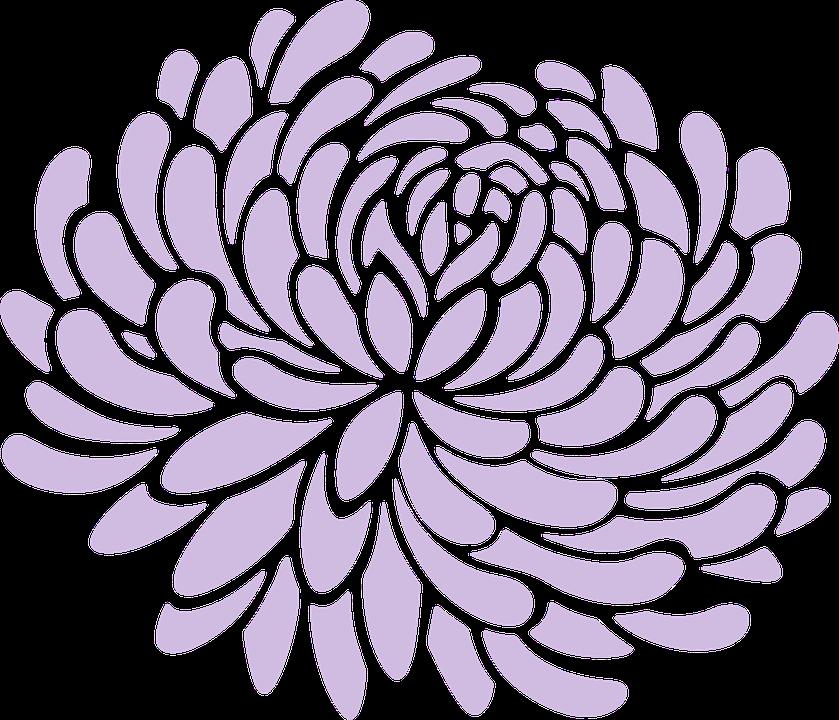 Mum, Floral, Flower