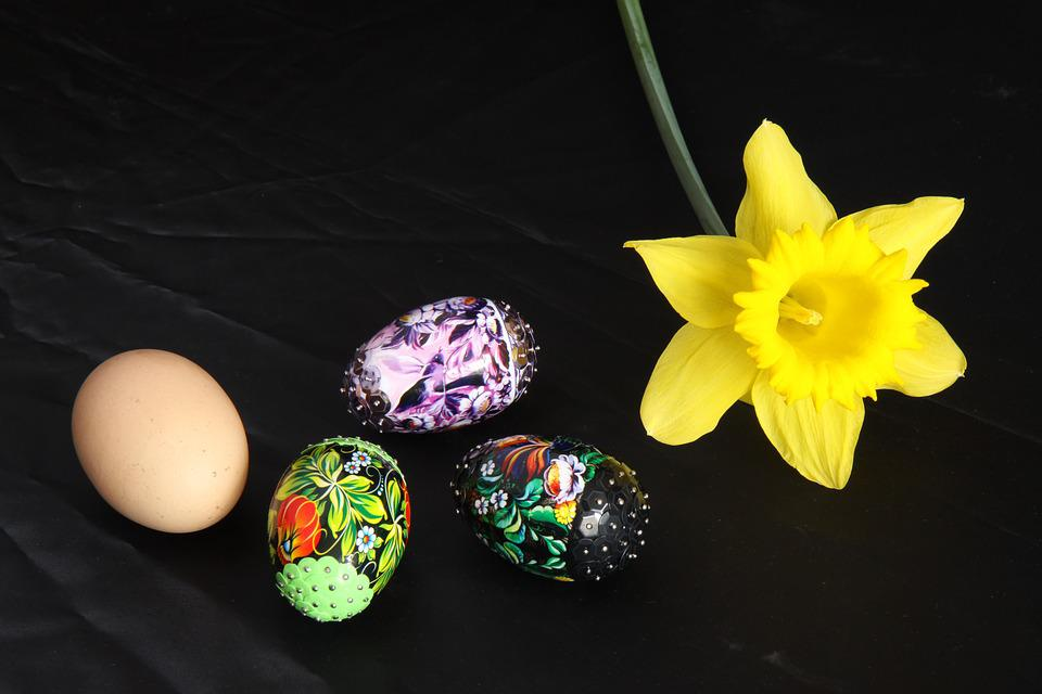 Easter, Flower, Nature, Color