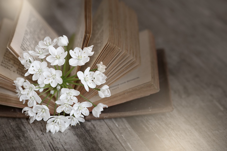 Book, Old, Used, Old Book, Book Pages, Flower, Flowers