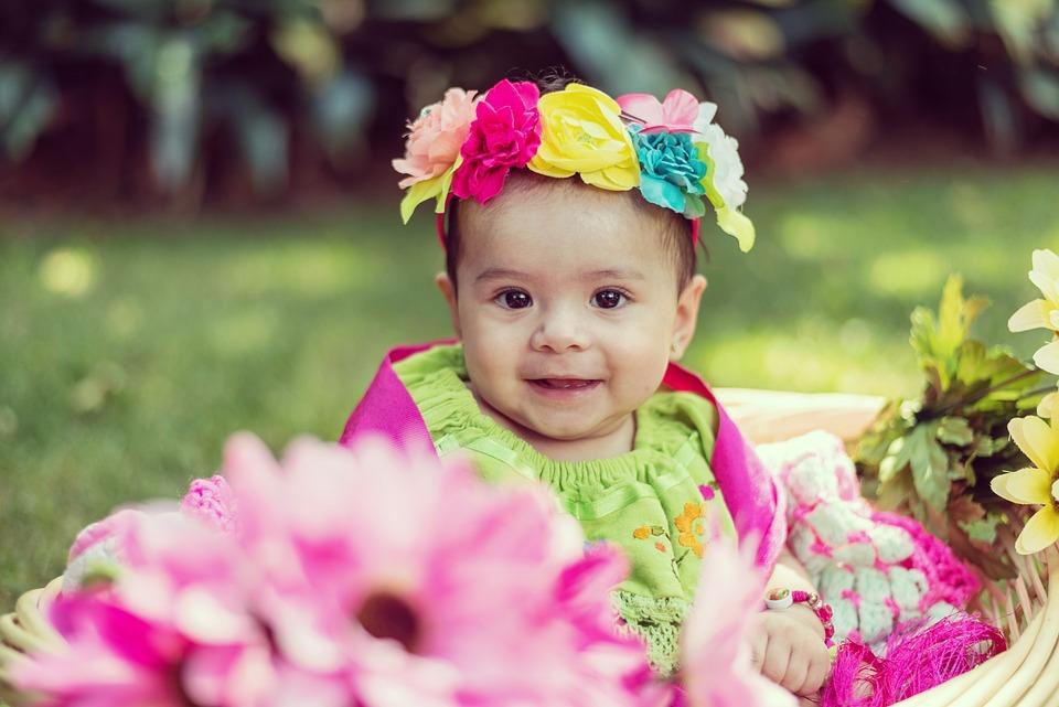 Child, Nature, Little, Summer, Park, Flower, Outdoors