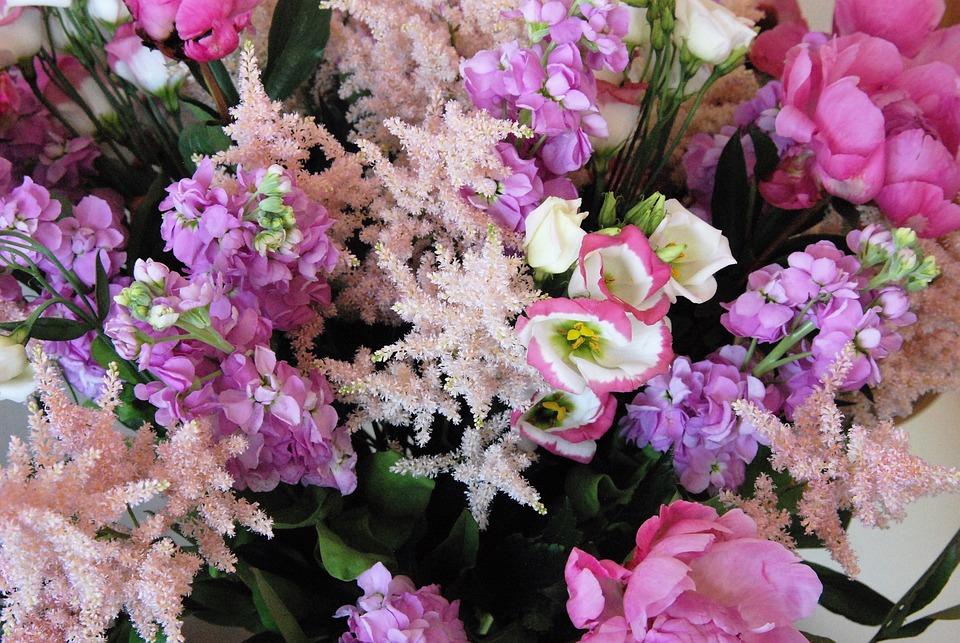 Bouquet, Flower, Pink, Party, Cut Flowers, Romantic