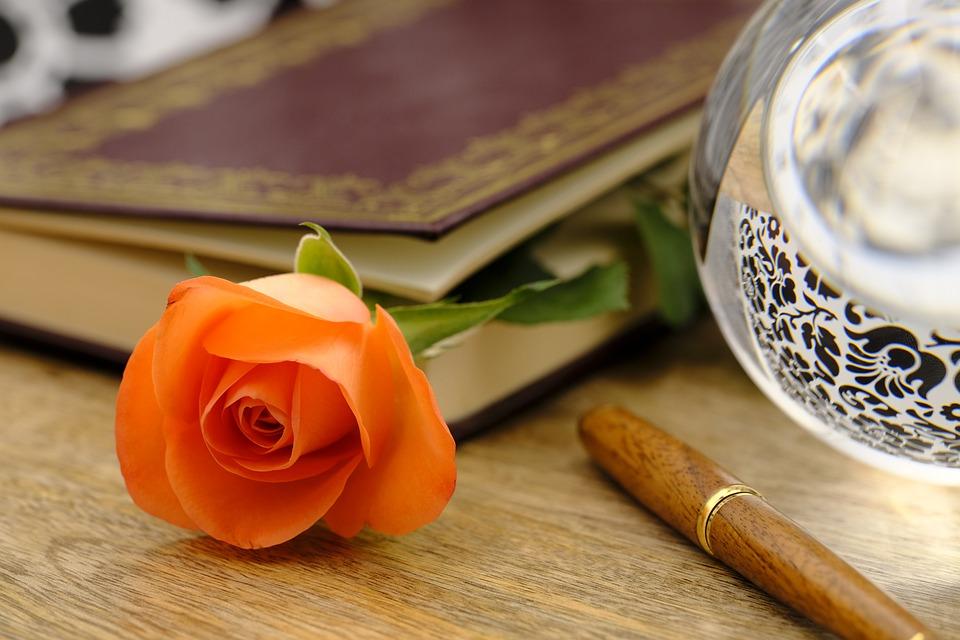 Rose, Flower, Blossom, Bloom, Romantic, Romance