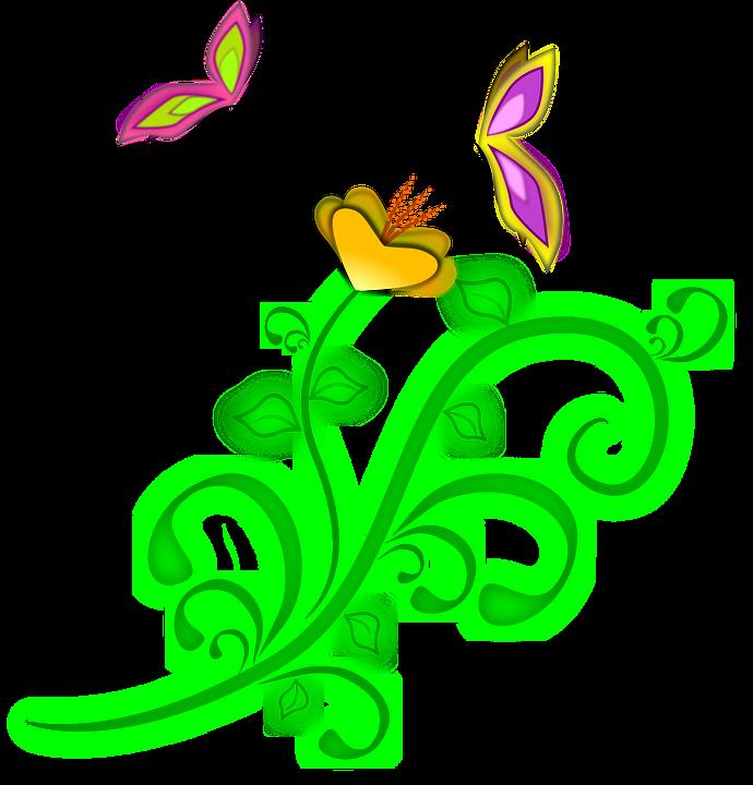 Flower, Butterflies, Spring, Vine