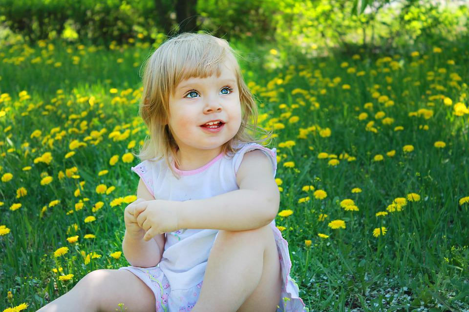 Summer, Dandelion, Flower, Nature, Green, Yellow, Girl