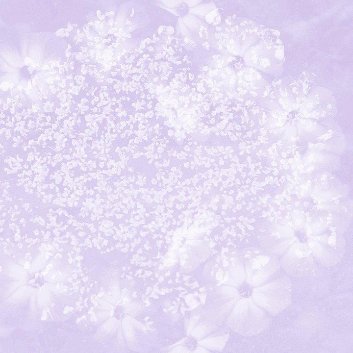 Texture, Wedding, Baby, Flower, Lilac