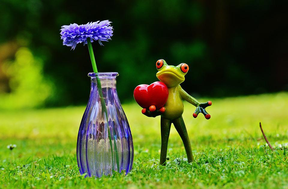 Free Photo Flower Vase Glass Love Frog Valentines Day Max Pixel