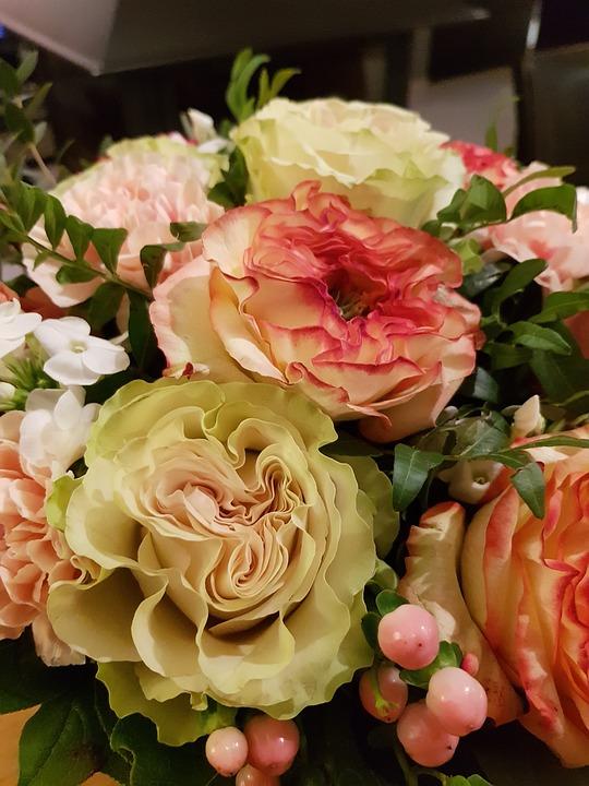 Rosebush, Flower, Wedding