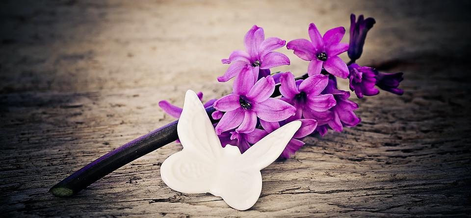 Hyacinth, Flower, Flowers, Pink, Deco Butterfly, Wood