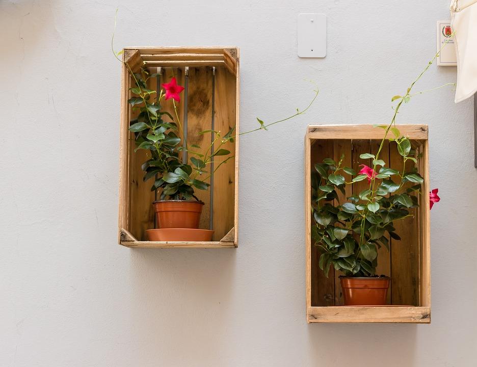 Free photo Flowerpot Decoration Flower Pots Wall Box - Max Pixel
