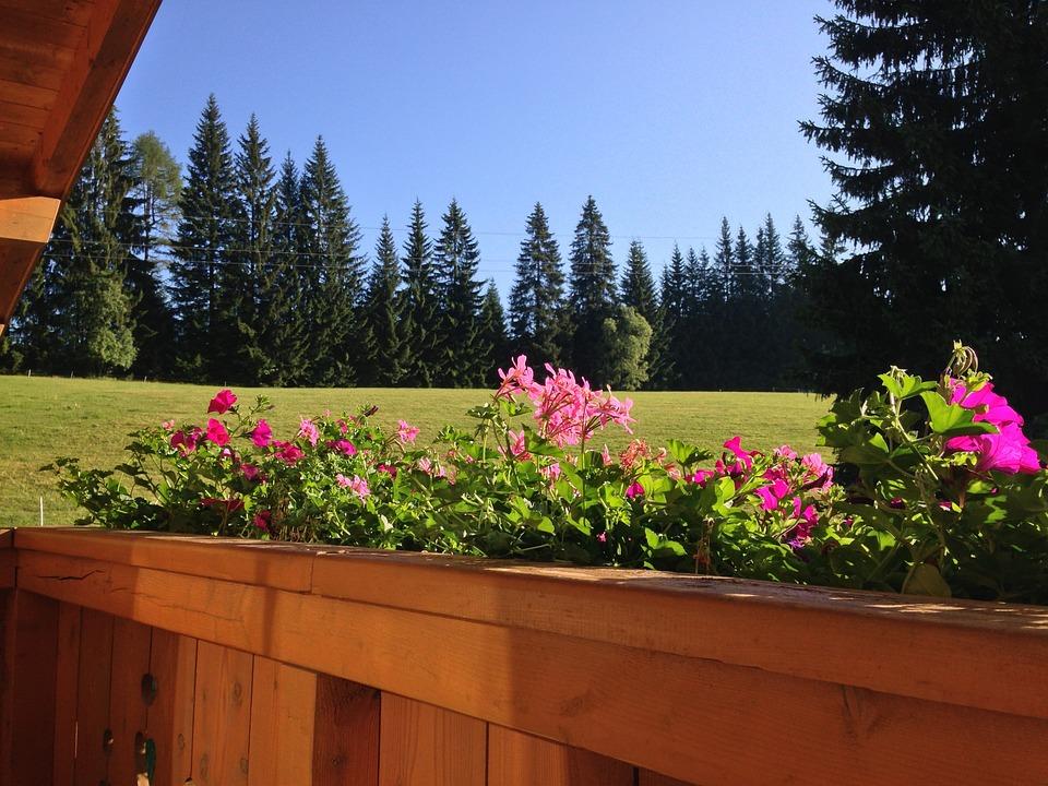 Austria, Flowers, Mountain, Balcony Box, Air, Natural