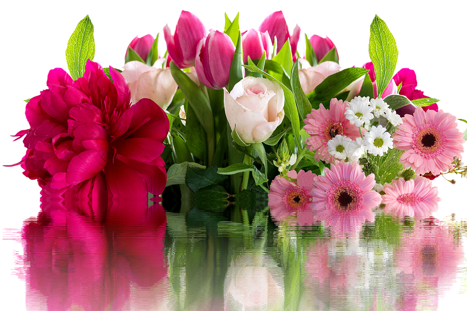 Roses, Gerbera, Flowers, Blossom, Bloom, Bouquet, Pink