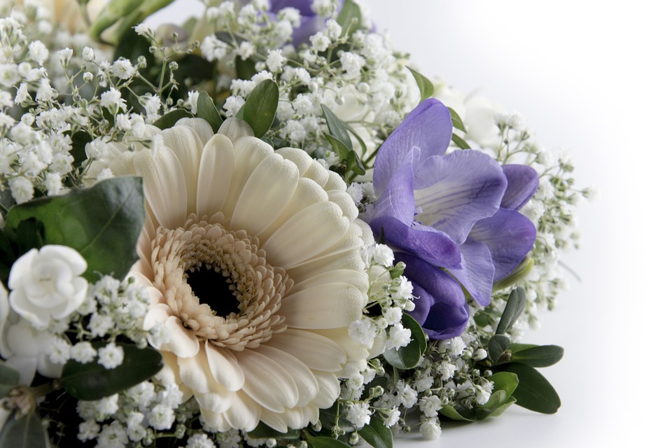 Flowers, Gerbera, Roses, Tulips, Close Up, Blossom