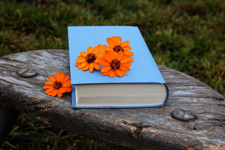 Book, Flowers, Orange, Blue, Beautiful