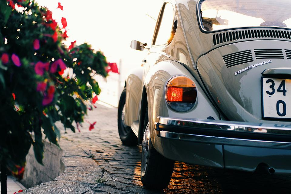 Automobile, Automotive, Beetle, Car, Classic, Flowers