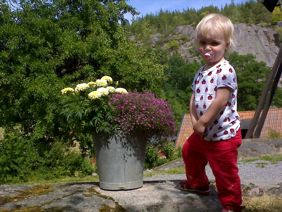 Children, Flowers, Bucket
