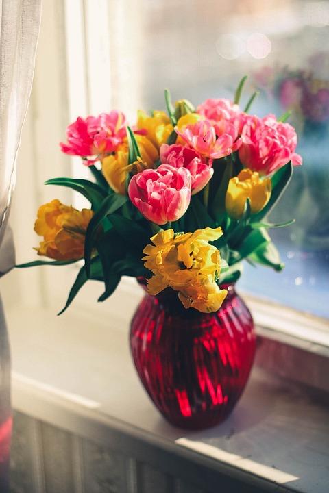 Bloom, Bouquet, Decoration, Flora, Flowers, Vase