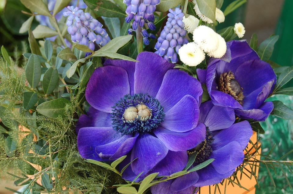 Flower Arrangement, Flowers, Flower Arrangements