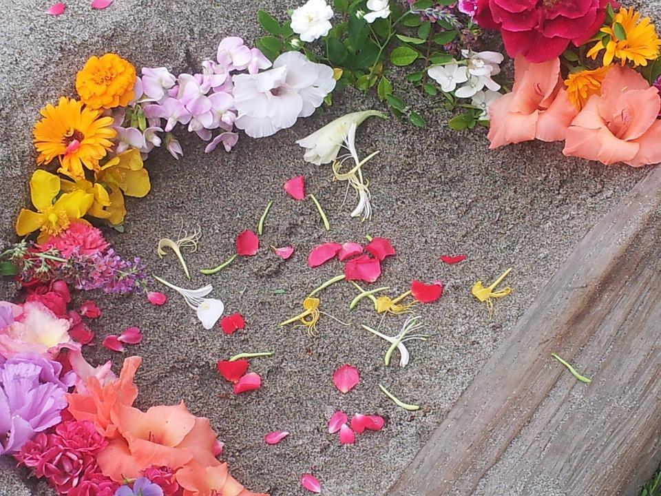 Flowers, Fresh Flowers, Flora, Sand, Flower, Spring