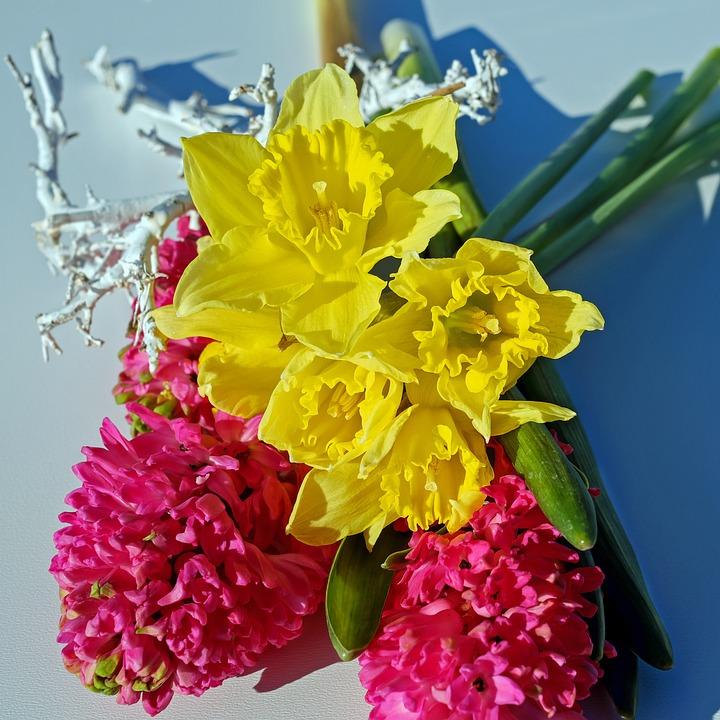 Free photo Flowers Hyacinth Pink Osterglocken Yellow Bouquet - Max Pixel