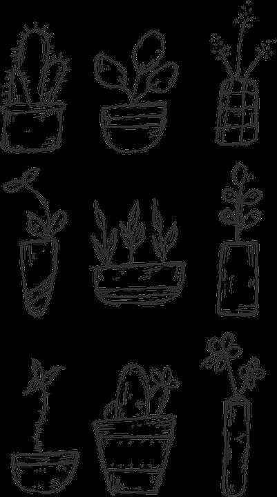 Flowers, črepník, Nature, Icon, Hand Drawn, Cactus