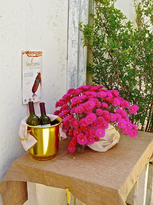 Welcome, Flowers, Wine, Invitation, Greeting