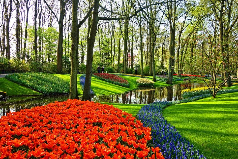 Garden, Flower Garden, Flowers, Flower Bed, Lawn, Brook