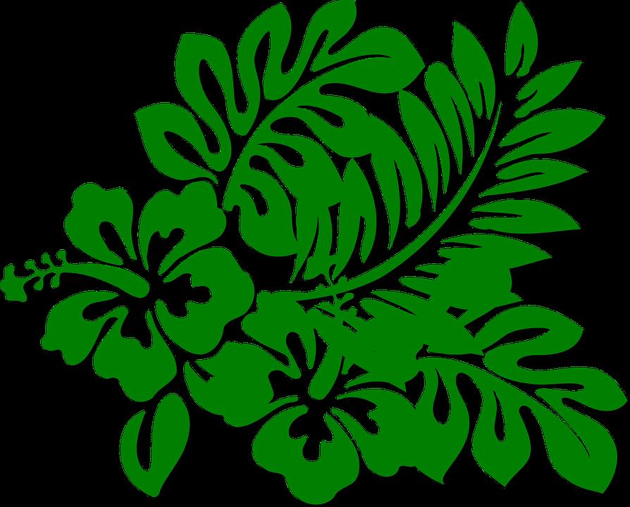 Flowers, Green, Branch, Plant, Leaves, Vegetation