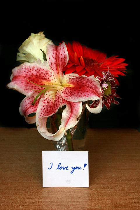 Flowers, Message, I Love You, Love