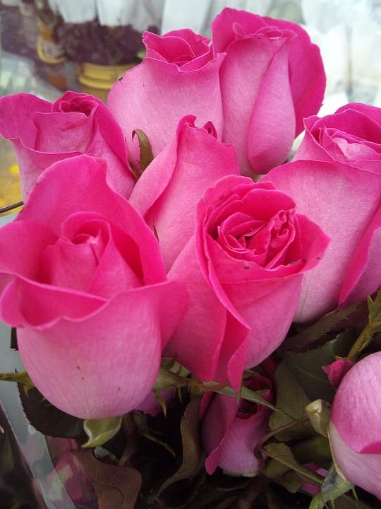 Flower, Florist, Flowers, White, Marriage, Garden