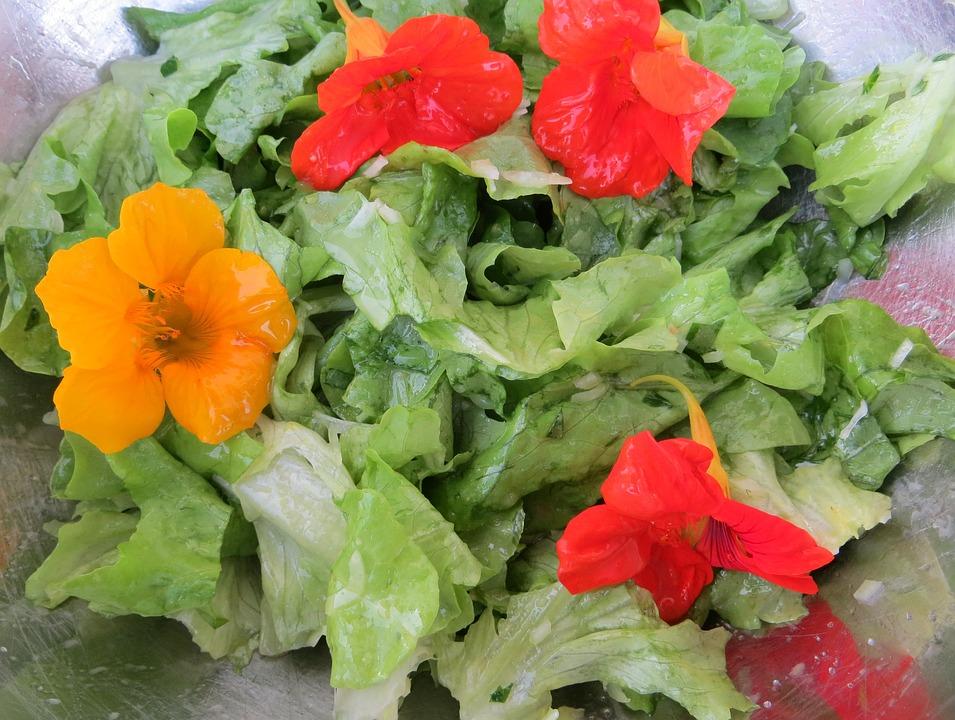 Salad, Nasturtium, Flowers