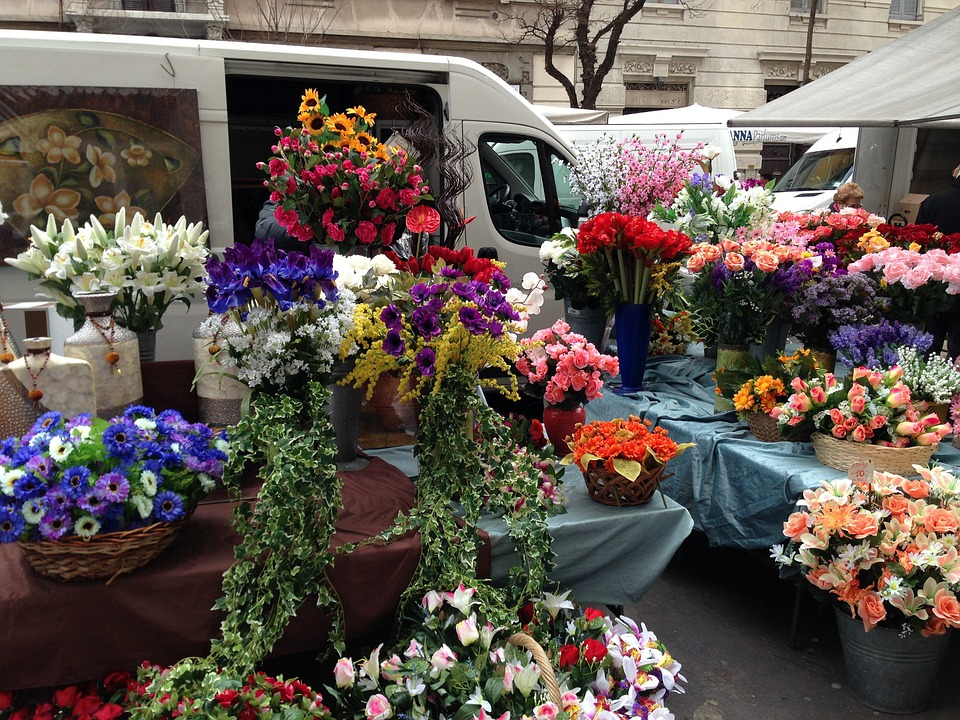 Flower, Shop, Italy, Flowers, Plants, Outside, Colors