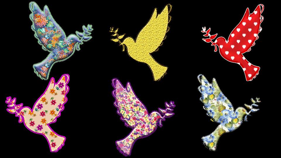 Birds, Patterns, Flowers, Free Vectors, Owl, Swan