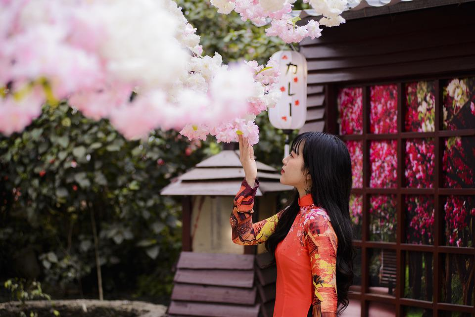 Woman, Model, Flowers, Petals, Branches, Trees, Female