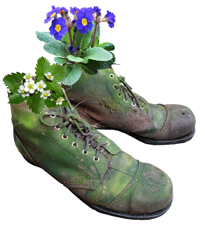 Planter, Flowers, Old Boots, Moss