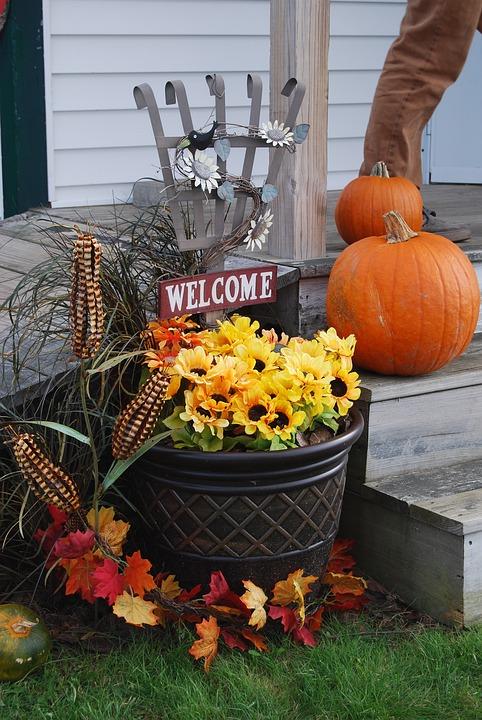 Autumn, Flowers, Decoration, Fall, Pumpkin