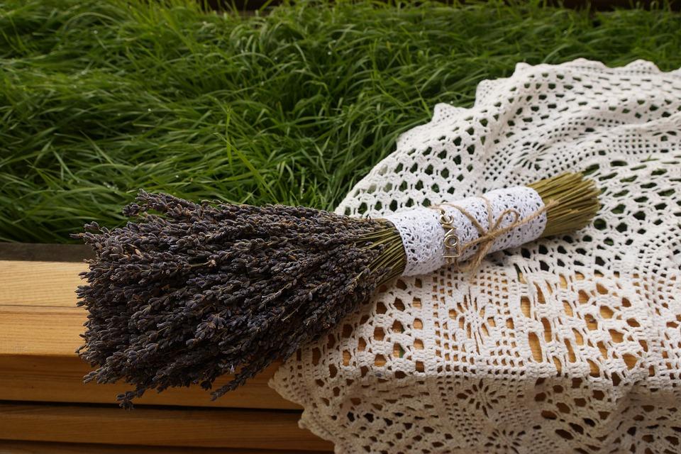 Lavender, Flowers, Floral, Nature, Purple, Plant