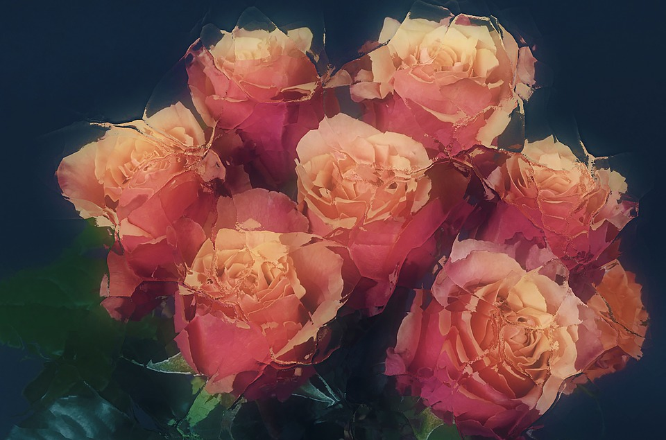 Roses In Ice, Frozen, Romantic, Flowers, Art