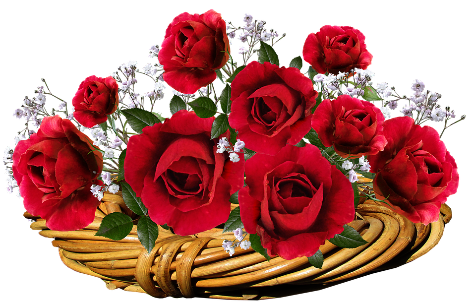 Roses, Red, Flowers, Romantic, Valentine, Basket