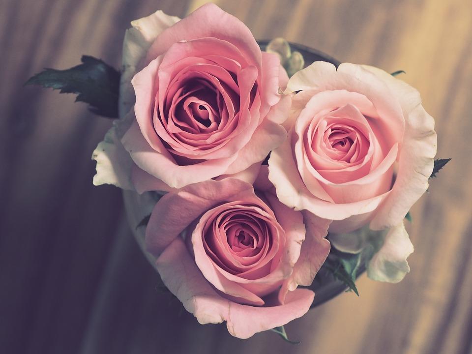 Roses, Pink, Flowers, Bouquet, Romantic, Wedding