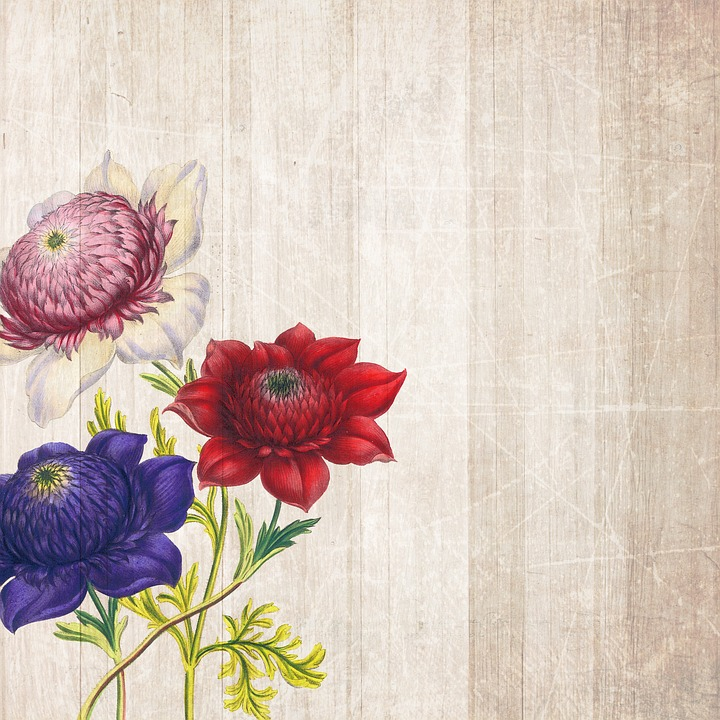 Background, Roses, Boards, Flowers, Scrapbooking, Paper