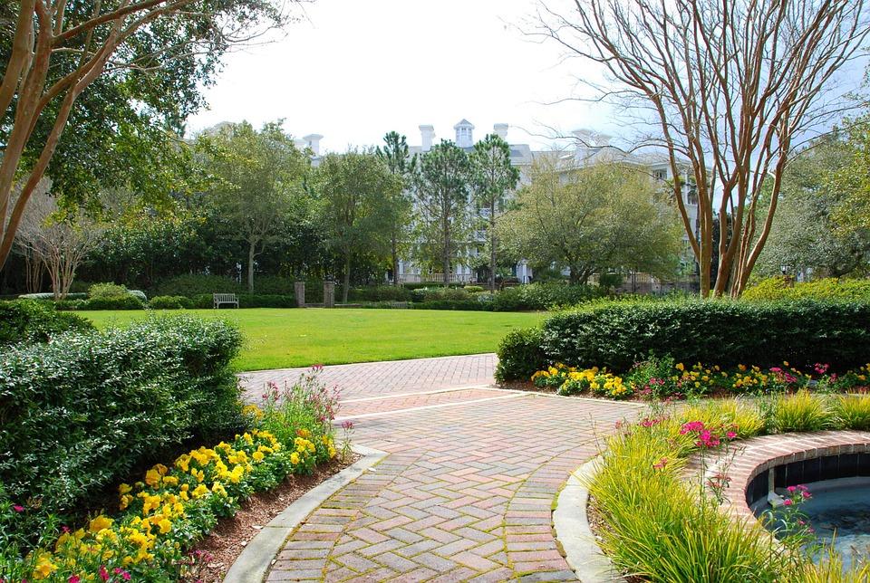 Garden Walkway Sidewalk Beauty Flowers Plants