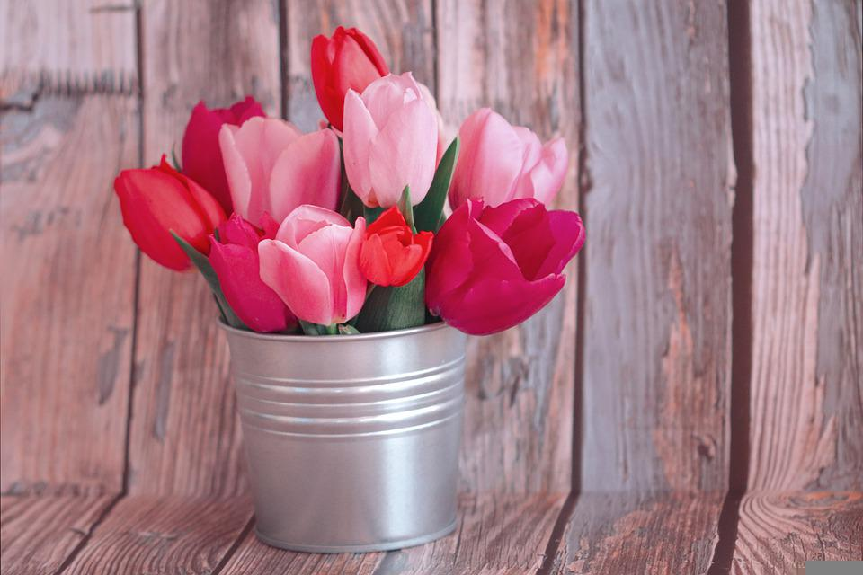 Flowers, Tulips, Bouquet, Can, Colorful, Spring, Bloom