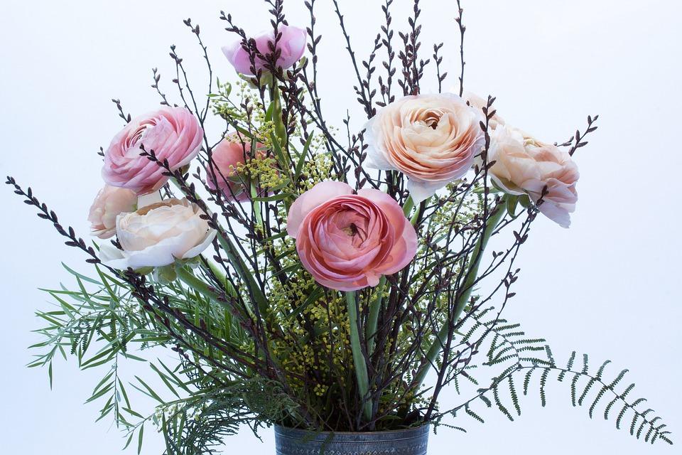 Ranunkeln, Flowers, Spring, Nature, Plant