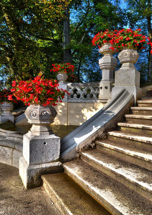 Flowers, Staircase, Nature
