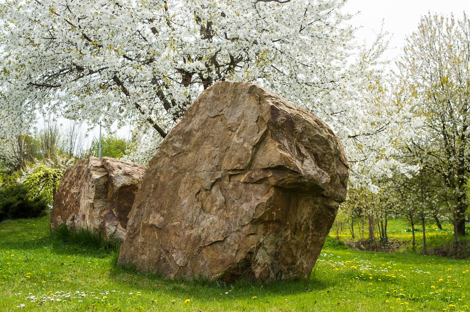 Spring, Flowers, Stone, Still Life, Green