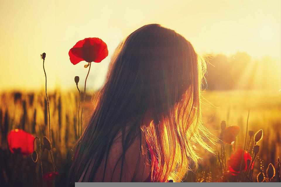 Woman, Poppies, Sunlight, Girl, Flowers, Field, Spring