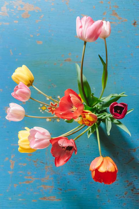 Tulips, Colorful, Flowers, Bouquet, Spring, Color