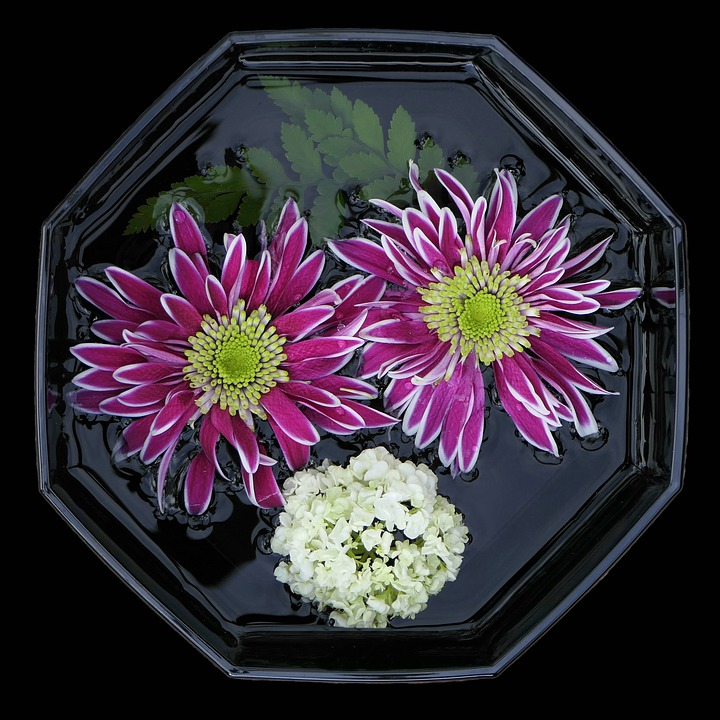 Flower Bowl, Asters, Flowers Violet, Lilac White