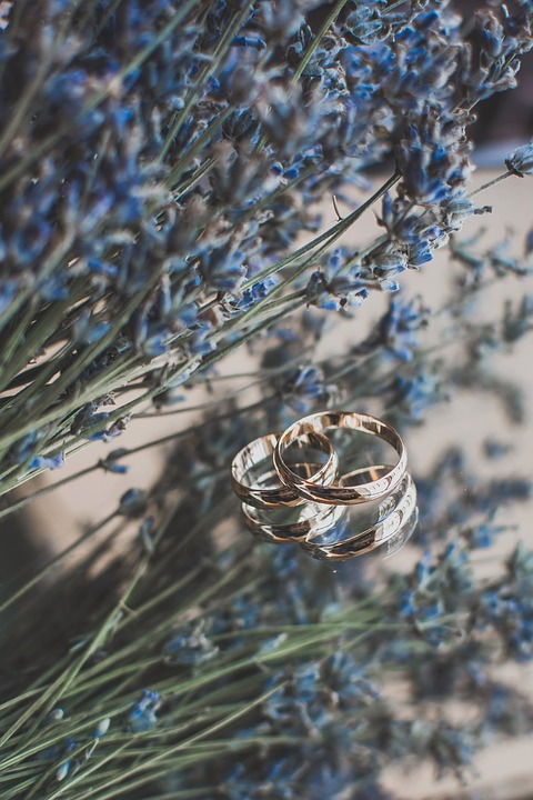 Nature, Plant, Outdoors, Rings, Flowers, Wedding Rings