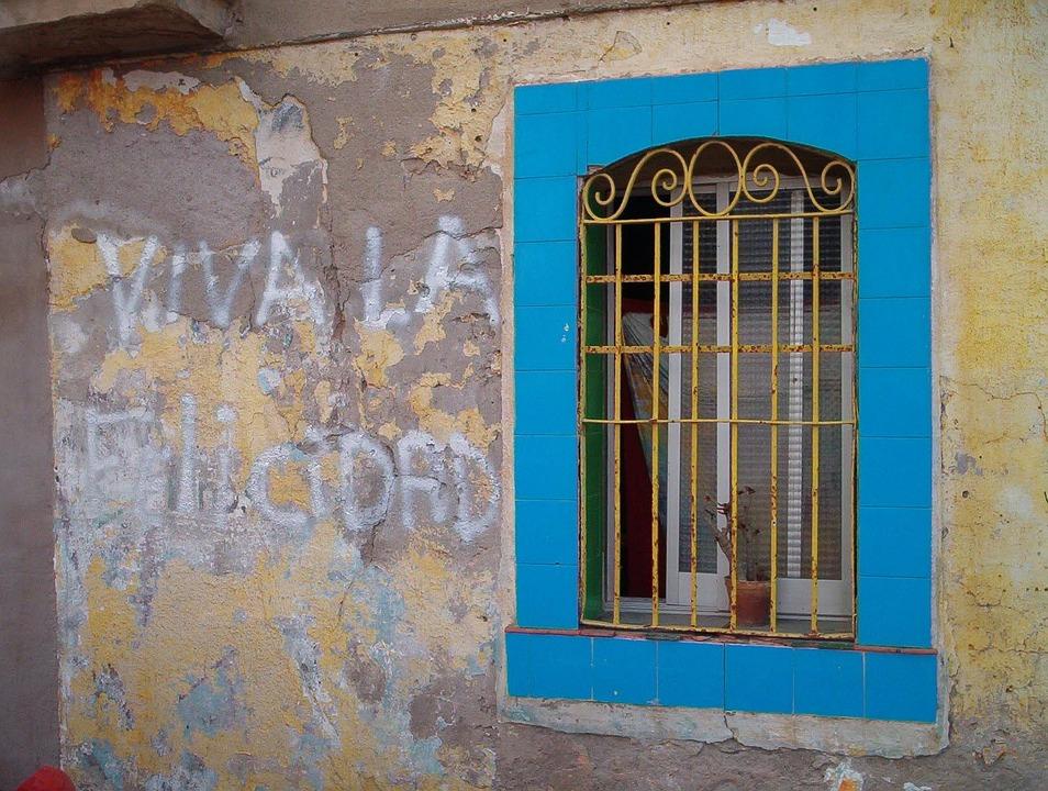 Window, Flowers, Blue, Window Gratings